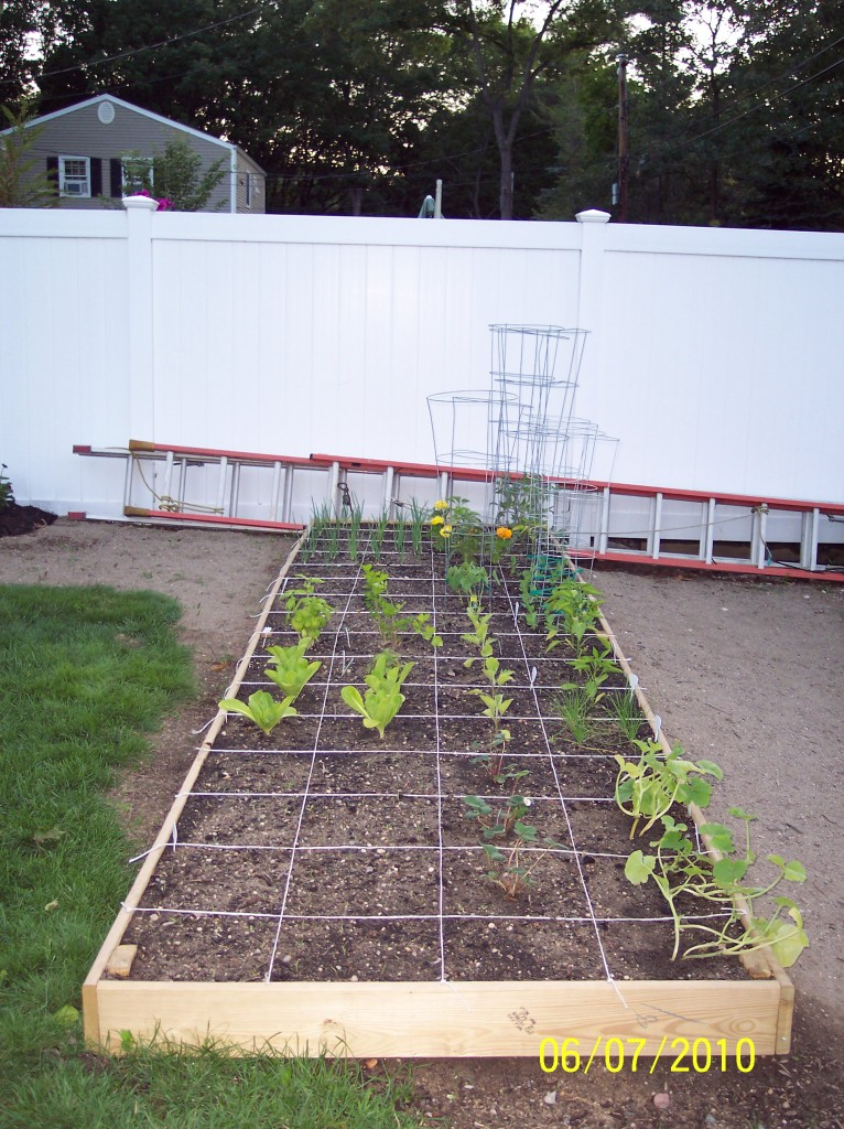 square foot gardening 100 5138 766x1024