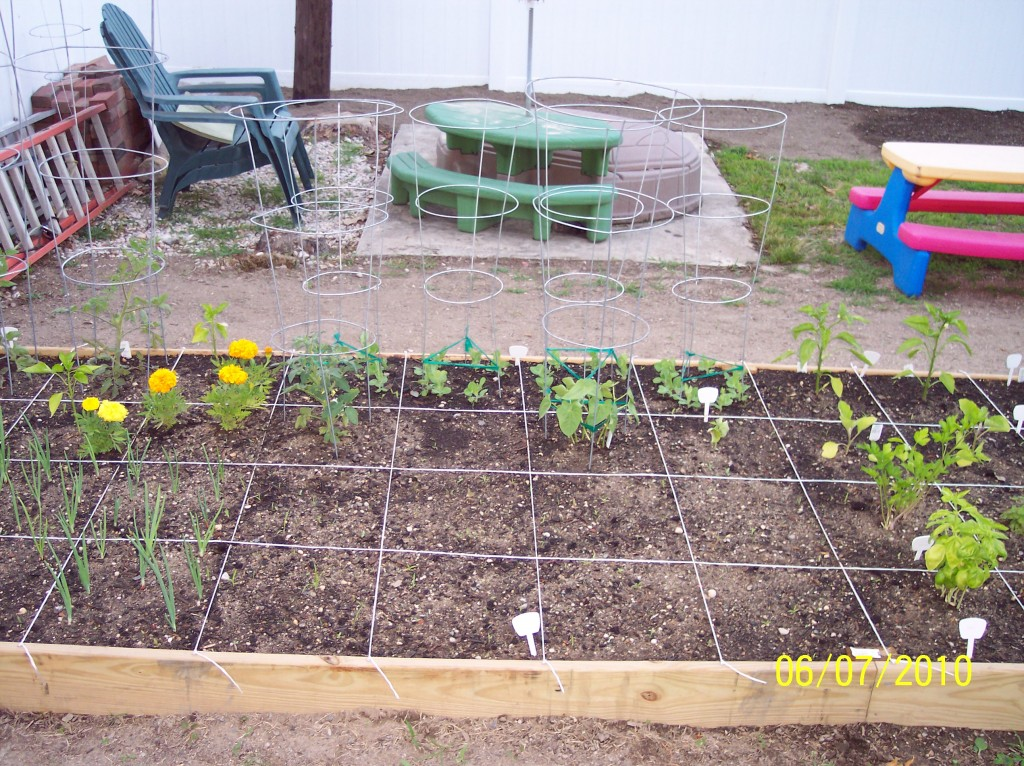 square foot gardening 100 5144 1024x766
