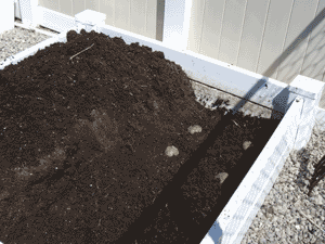 square foot gardening potatoes plant