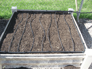 square foot gardening newbox irrigation