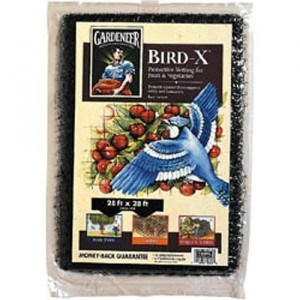 square foot gardening Bird Netting 300x300