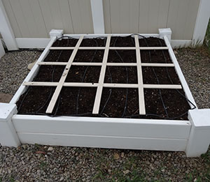 square foot gardening DSC00353 small