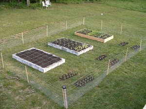 square foot gardening Fence Around Garden2 300x225