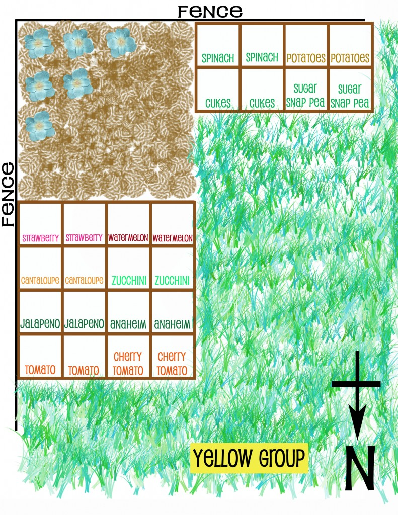 square foot gardening Garden Plan 791x1024