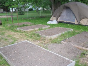 square foot gardening IMG 1919 300x225