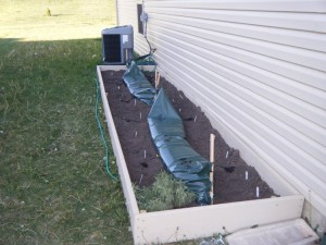 square foot gardening May 2010 south side of house 300x225