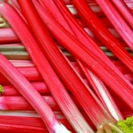 square foot gardening Rhubarb 150x150