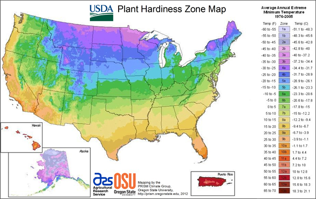 square foot gardening USDA map