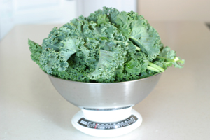 square foot gardening kale bowl