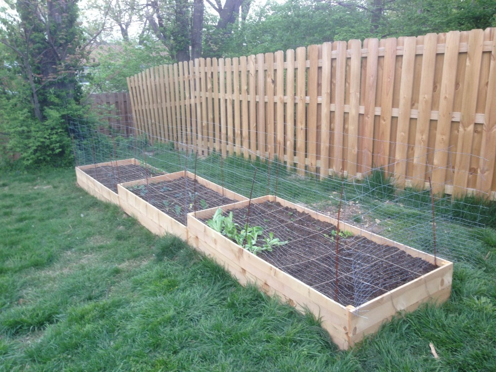 square foot gardening photo 1024x768