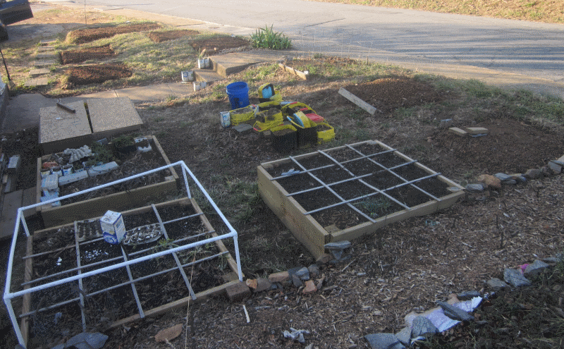 square foot gardening south facing