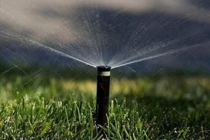 square foot gardening sprinklers 300x200